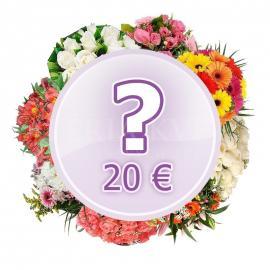Kytica Prekvapenie za 20€