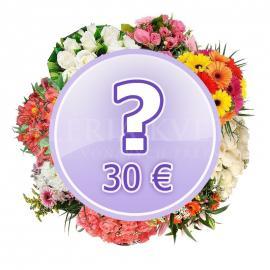 Kytica Prekvapenie za 30€