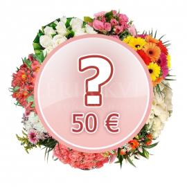 Kytica Prekvapenie za 50€