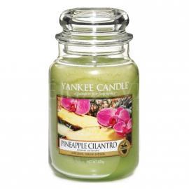 Sviečka Pineapple Cilantro
