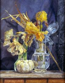 Žluté Irisy