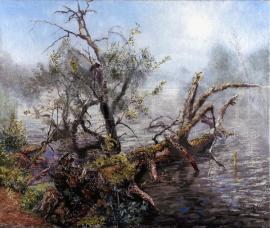 Lednický rybník