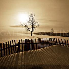 Zimná krajina s plotom - Zákamenné