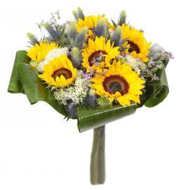 Kytica Summer sunflower