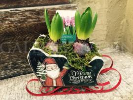 Vianočné kvetinové sane