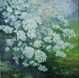 Jarná čerešňa