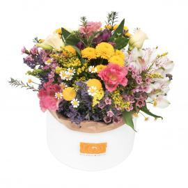 Kvetinový box LÚKA
