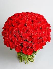 Kráľovská kytica 101 ruží