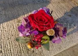 Ružička na jeseň