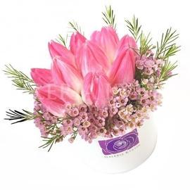 Kvetinový box TULIPÁN Mini