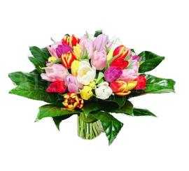 kytica z tulipanov