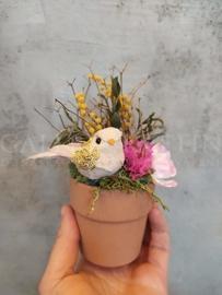Aranžmán Veselý vtáčik