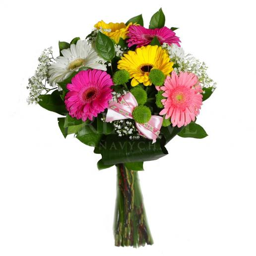 Kytica Garden Flowers