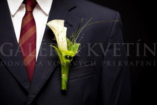 Pierko pre ženícha Elegancia