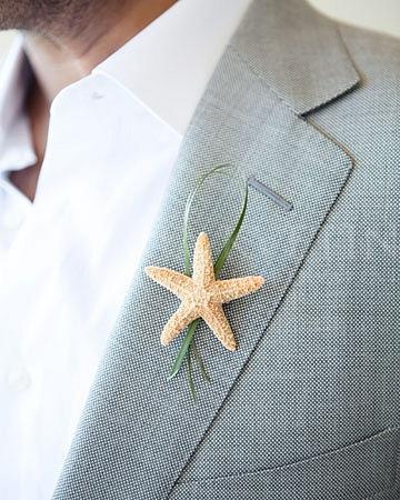 Pierko Morská hviezdica