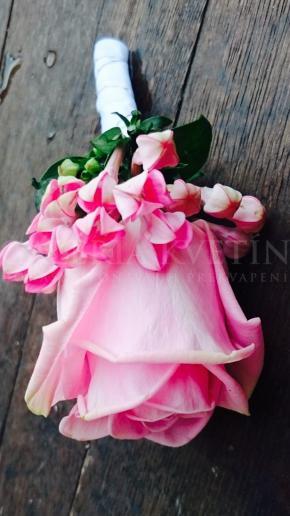 Pierko Bouvardia v ružovom