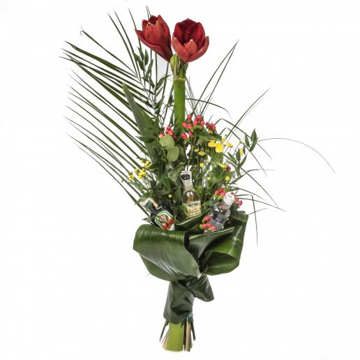 Kytica Gratulačný amarylis