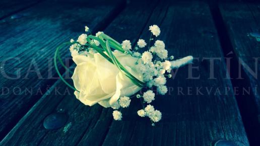 Pierko pre ženícha Biela ruža