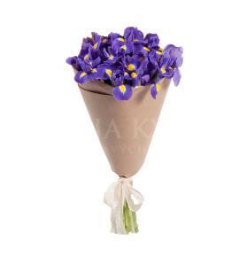 Kytica Fresh Violet