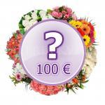 Kytica Prekvapenie za 100€